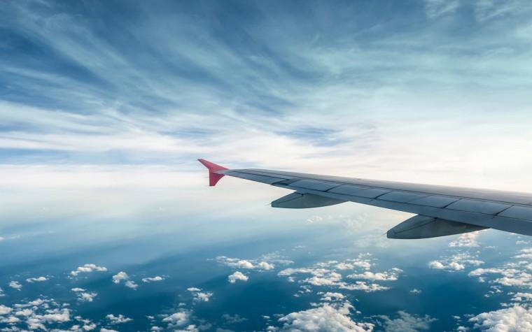 Крылья самолетов могут покрыть чешуей
