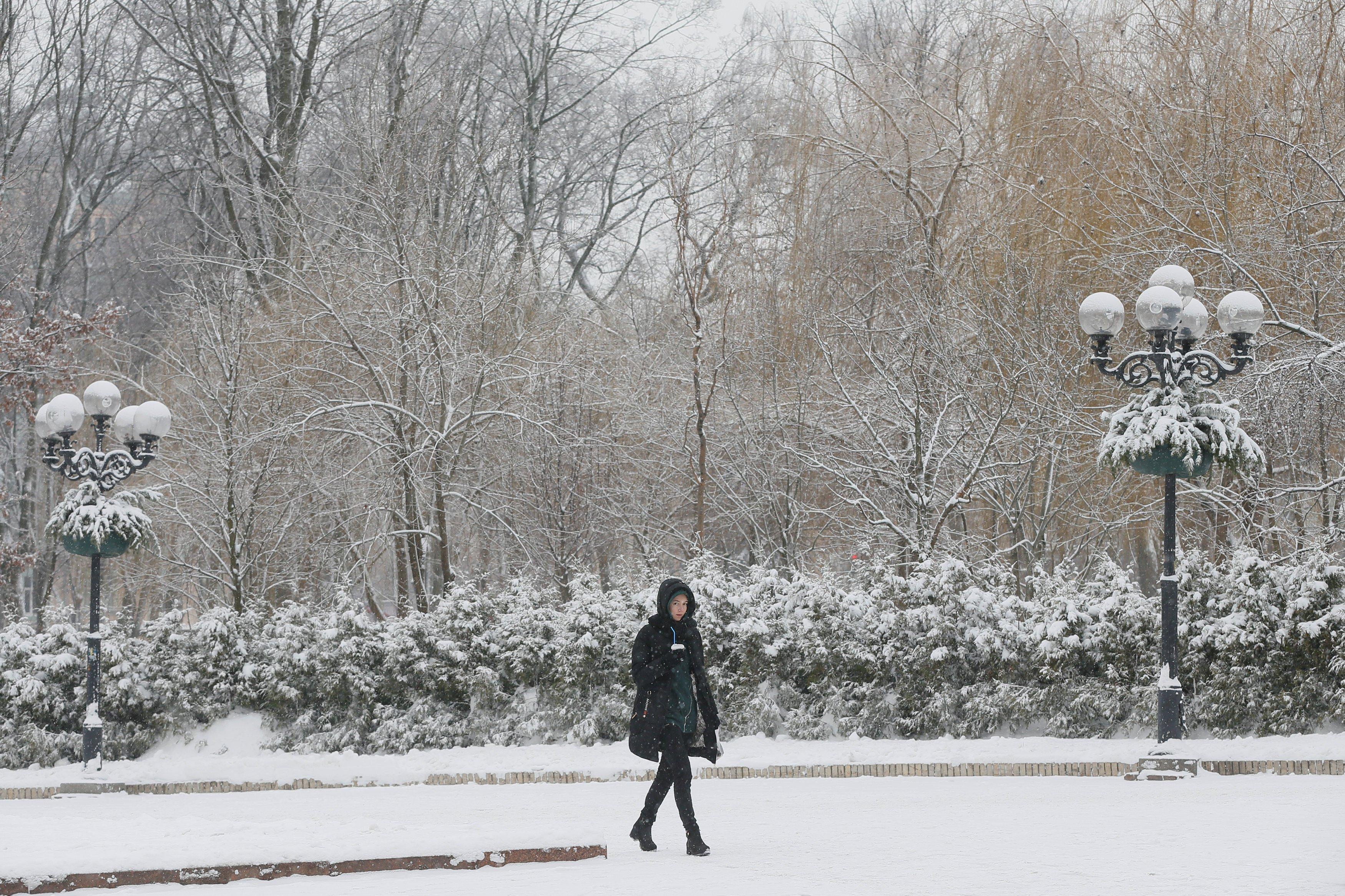 Народный синоптик спрогнозировал, что в Украине будущая зима не будет суровой
