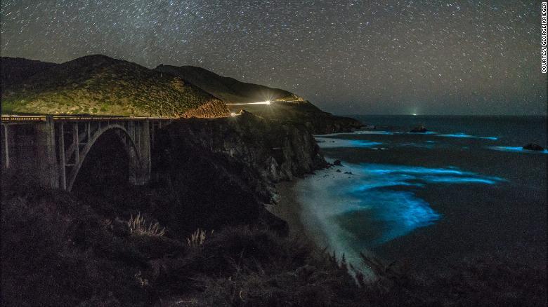 Волны Тихого океана светятся в темноте.