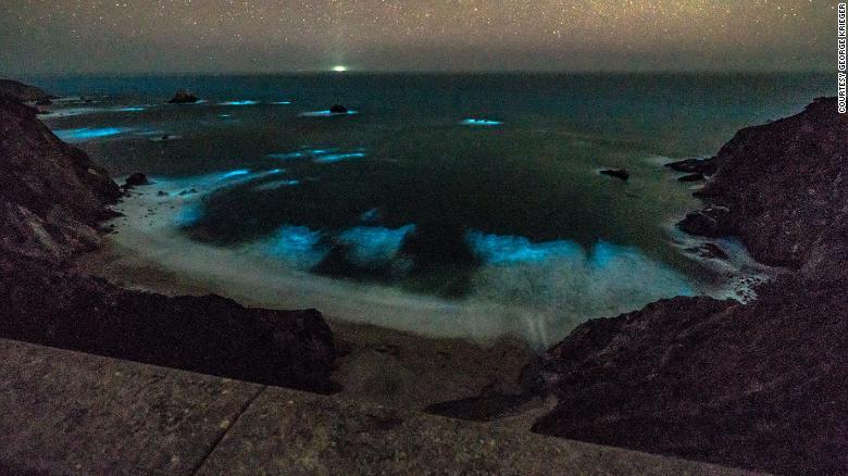 У берегов США ночью светятся воды Тихого океана, впечатляющие фото и видео