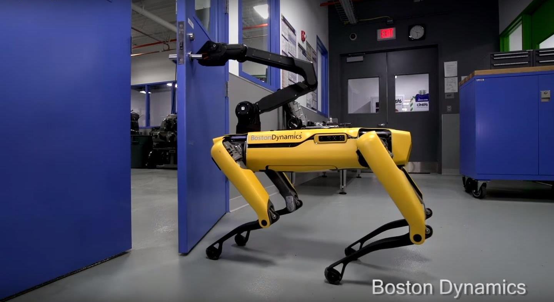 Робот-собака сам открывает дверь