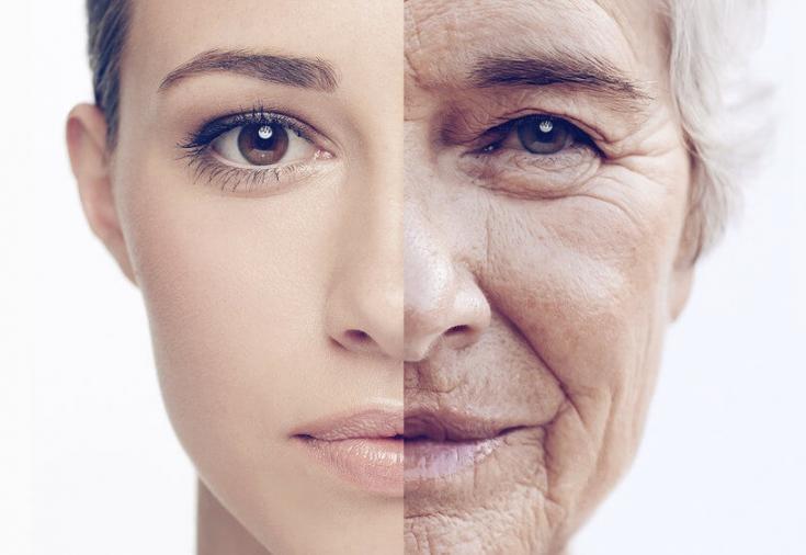 Ученые из Португалии нашли новый способ борьбы со старением