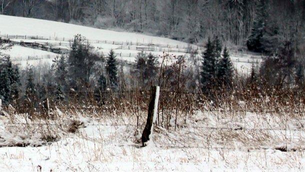 Экс-депутат найден мертвым в снегу