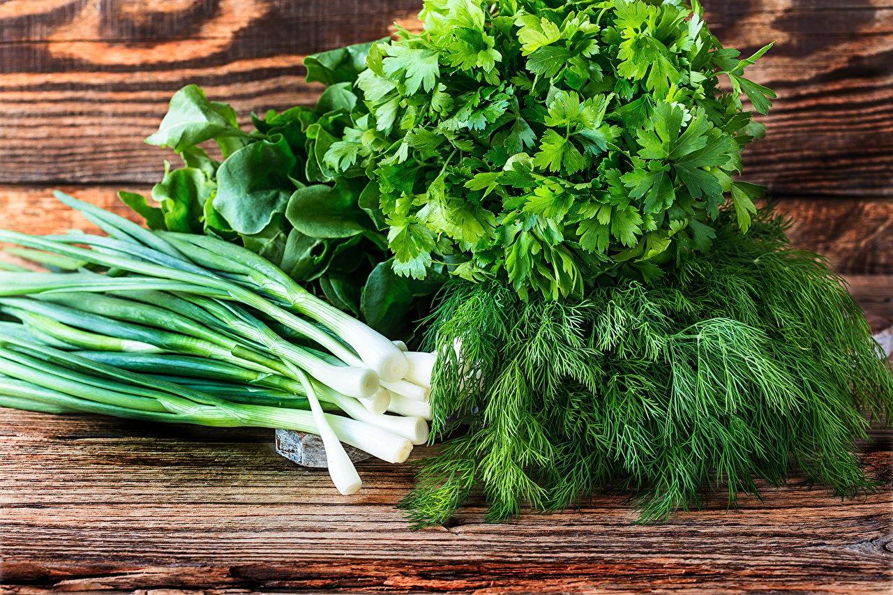 зелень_лук-репчатый_укроп_овощи