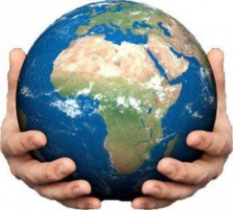 В Африке вымрет половина видов животных