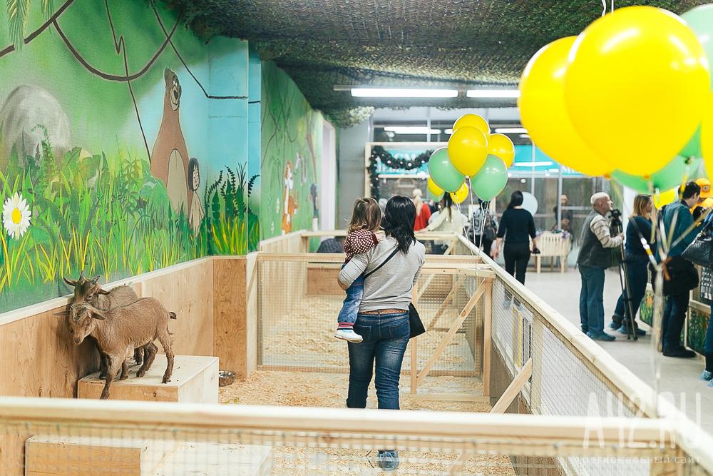 В зоопарке содержалось более 200 животных, все они погибли