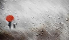 На дорогах – армагеддон, готовьте валерьянку: синоптики напугали прогнозом погоды на 24 сентября