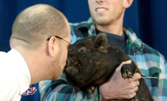 В одной из школ США ученики читают книги - директор целует свинью