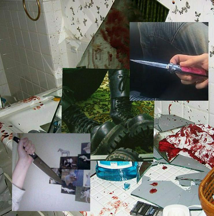 Ученик, устроивший резню в российской школе, был фанатом