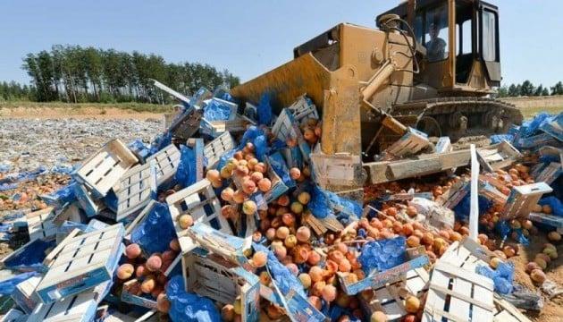 В ответ на санкции против олигархов Путина российские власти начинают тракторами давить еду.