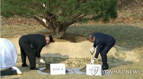 Ким Чен Ын и Мун Чжэ Ин посадили сосну