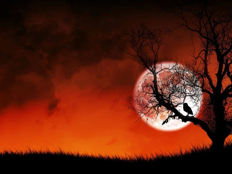 В Вальпургиеву ночь слабеет граница между мирами живых и мертвых.