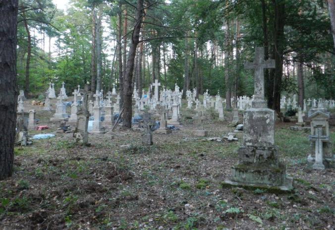 Реставрация кладбища в Старой Гуте