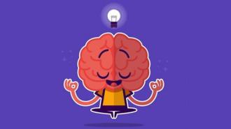 Люди с высоким уровнем физической активности не часто отличаются высоким интеллектом
