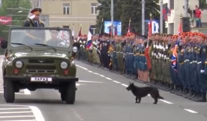 В Донецке в парада победы, устроенном боевиками
