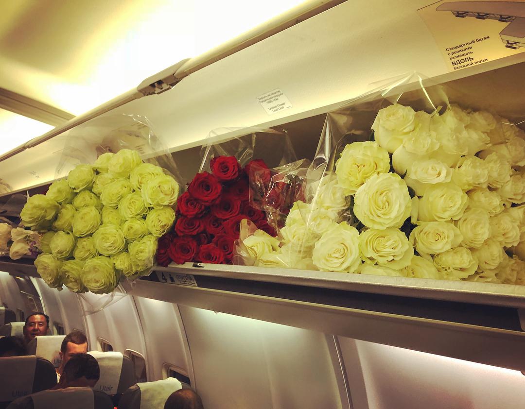 Волочкова разместила цветы по всему самолету