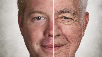Ученые старение