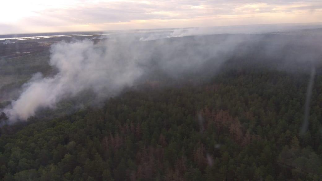 В Чернобыльской зоне сегодня утром еще наблюдались отдельные очаги горения и задымления на площади около пяти гектаров