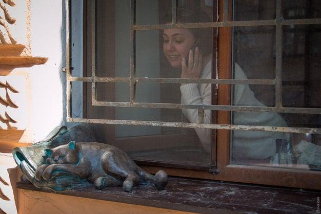 Скульптура кота Жванецкого изчезла