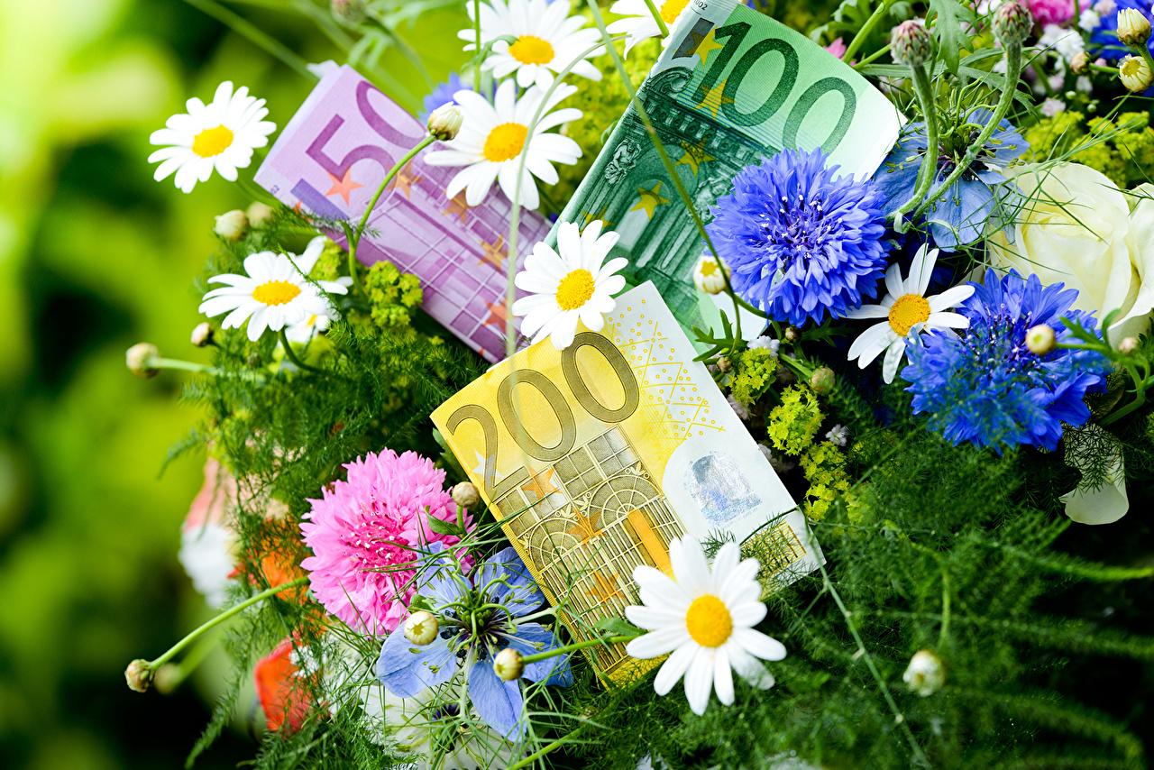 На что потратят 1 млрд евро от ЕС.