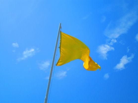 На пляжах Киева висит желтый флаг