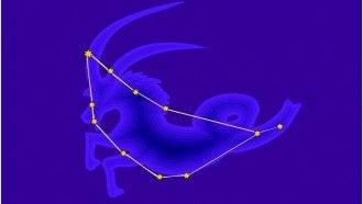 Самое уязвимое местом Козерога - колени, сказал астролог - Гороскоп 2019