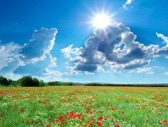 погода_лето_солнце_макі_облака_луг_поле_прірода