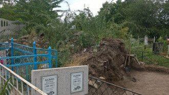 В Николаеве на свалке обнаружены человеческие останки: фото