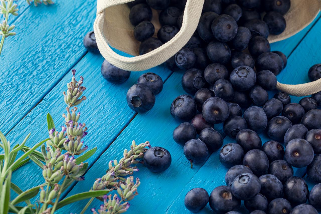 Черника – польза, калорийность, витамины, где растет и что лечит