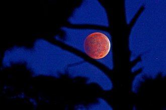 Астролог прогнозирует неприятности в период лунного затмения