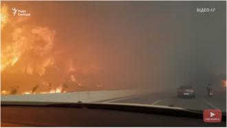 Пожары, убившие множество народу, и разорившие огромную территорию, начались с непотушенного костра