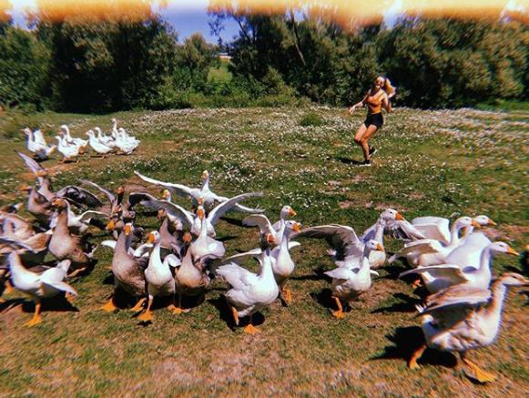Леся Никитюк показала фото с гусям