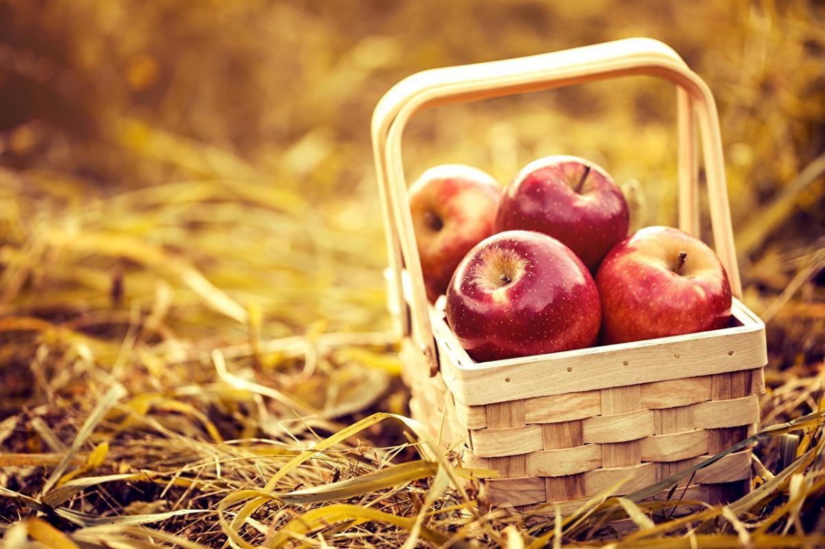 Православные христиане празднуют Яблочный Спас либо  Преображение Господне