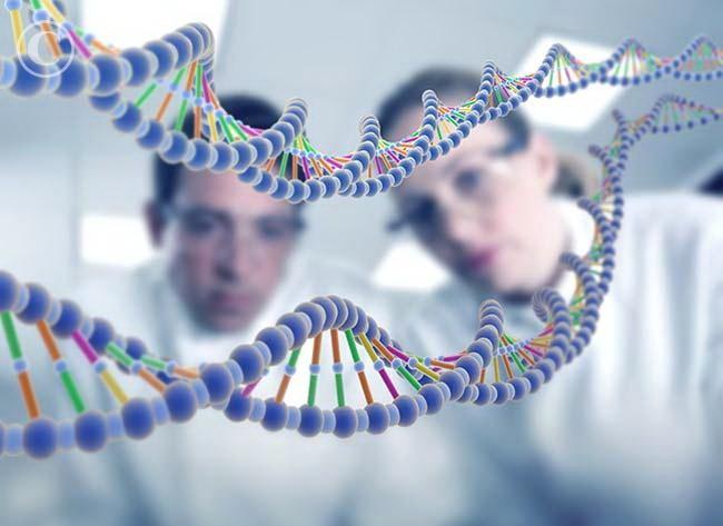Этот препарат будет воздействовать напрямую на гены