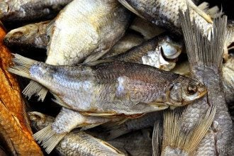Ботулізм, риба