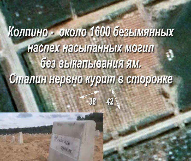 Упродовж доби поранено 1 українського воїна, найманці вчинили 15 обстрілів, у т.ч. із застосуванням мінометів, - прес-центр ОС - Цензор.НЕТ 5825