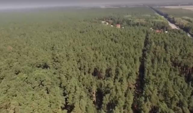 Журналисты узнали, что резиденция Петра Порошенко торгует древесиной, животными и их мясом