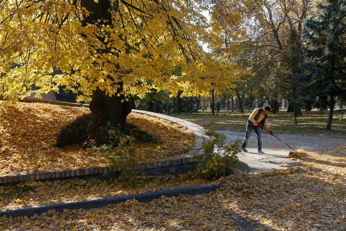 В Киеве в четверг потеплеет, спрогнозировала синоптик - Погода Київ
