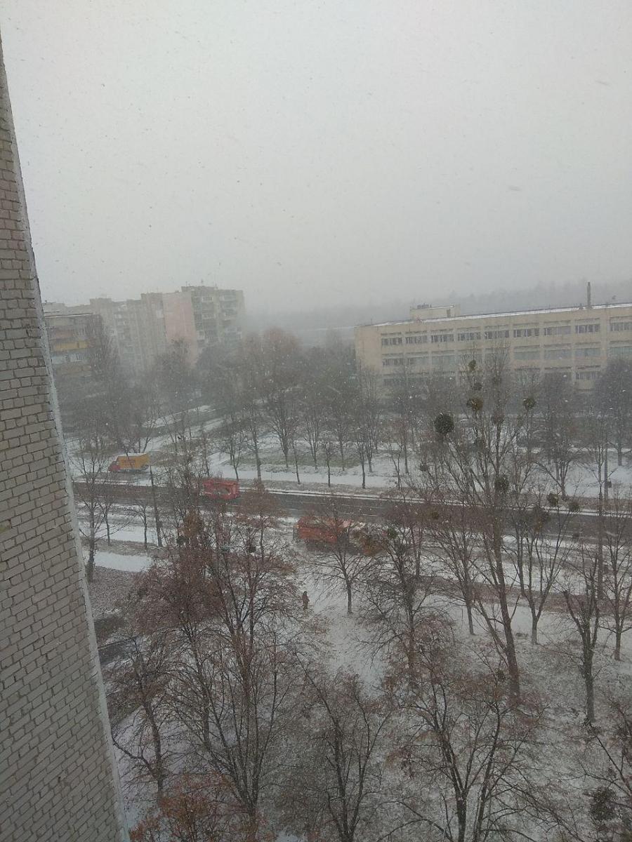В Киеве дороги, крыши домов и деревья припорошил первый снег