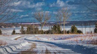 Синоптик Погода в Украине принесла потепление не во все регионы
