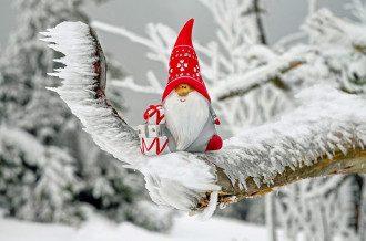 Погода на зиму 2021 в Украине - будет ли Новый год 2021 со снегом