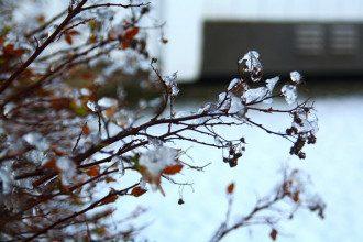 Синоптики сообщили, что в феврале-2019 в Украине средняя температура ожидается 0-5 градусов