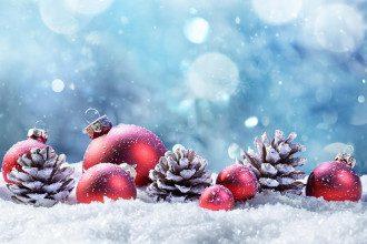праздники_Новый год_елочные украшения-игрушки-шарики-шары_шишки
