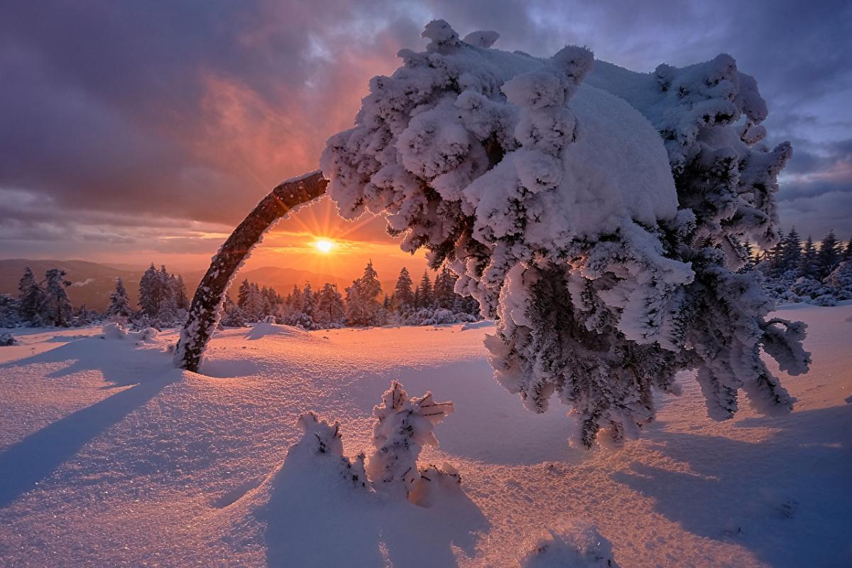 День зимнего солнцестояния 2019 – что делать, ритуалы, практики и молитвы