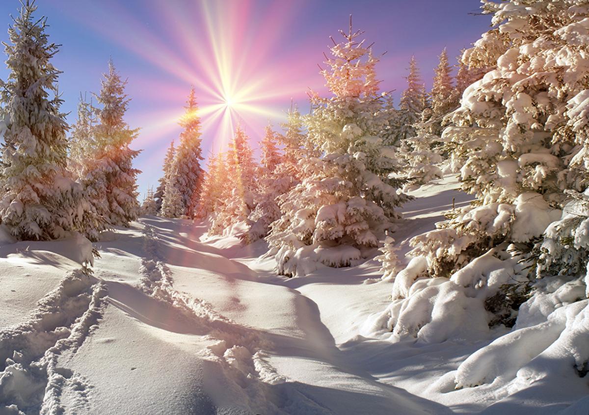 погода_зима_снег_солнце