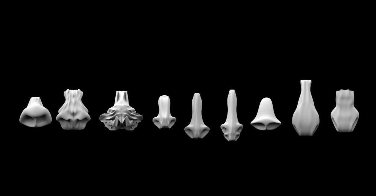 Человеческий нос, Марс