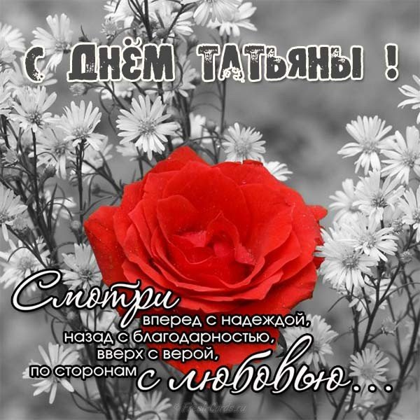 s-dnem-tatyani-pozdravleniya-otkritki-stihi foto 10