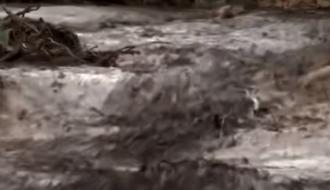 В Бразилии в результате обрушения плотины погибло много людей