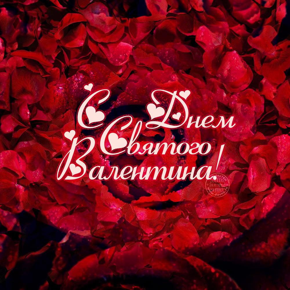 Поздравления с дне святого валентина своими словами фото 653