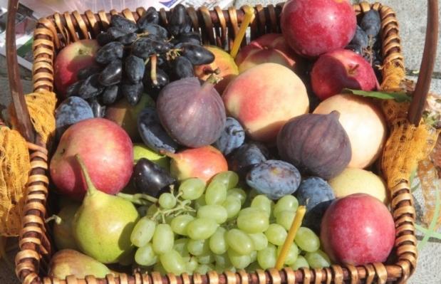 Полезные привычки - В день необходимо есть пять порций овощей и фруктов, посоветовала врач